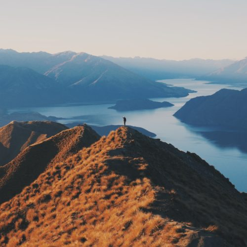 Overlooking New Zealand. Photo by Felix Lam on Unsplash.