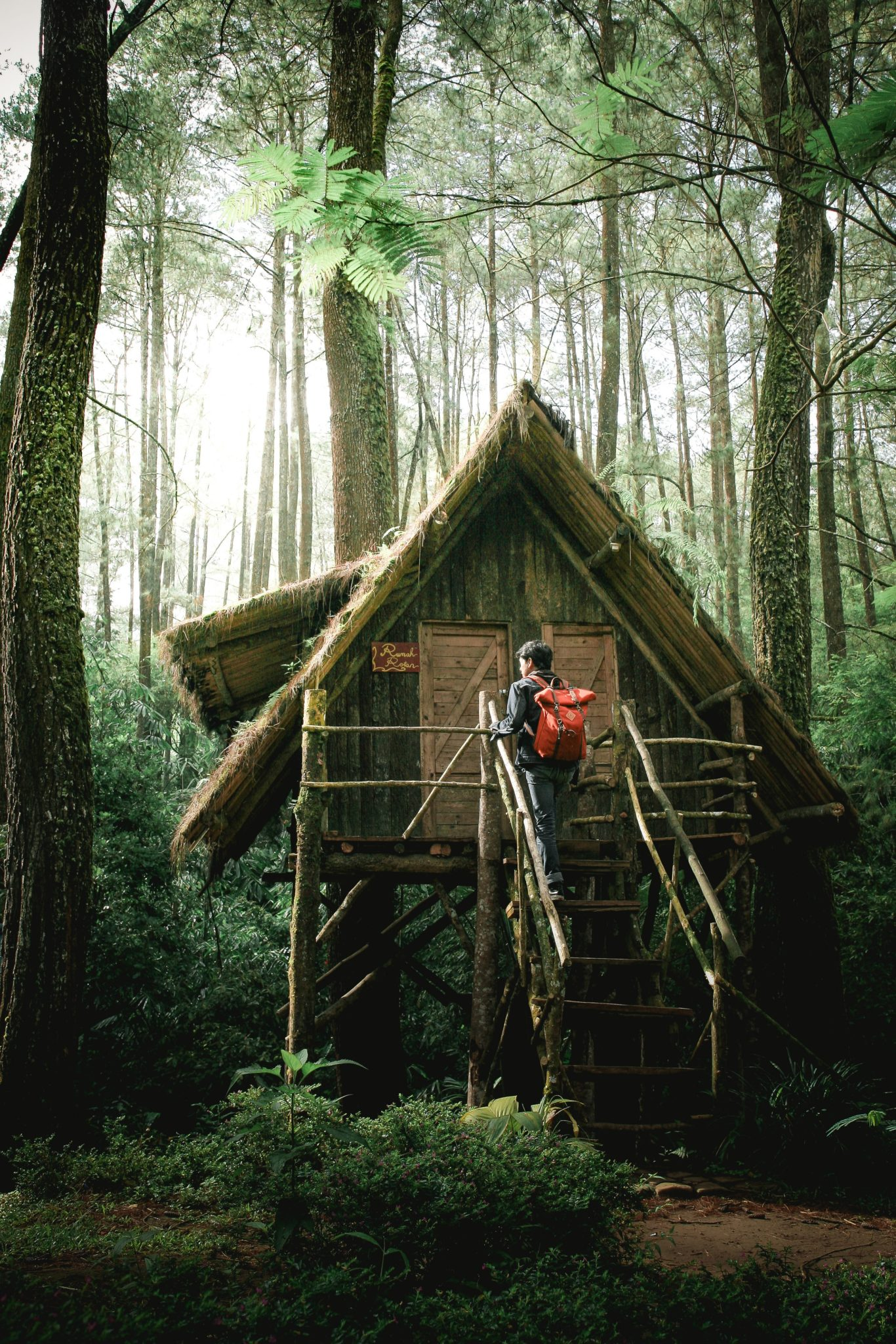 A guest entering a treehouse. Photo by KIMO on Unsplash