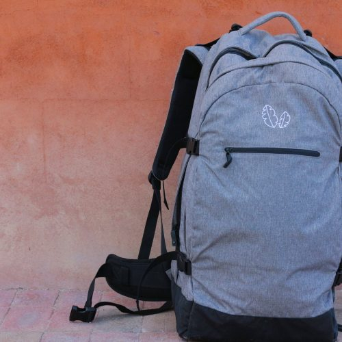 travel backpack from Banana Backpacks. Photo by Misty Foster.